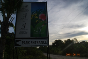Entrace to Tarsier Botanika
